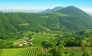 Abano-Montegrotto-Terme_content_pic