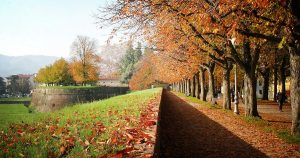 lucca-parco